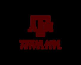 tam-stack.png