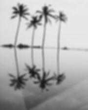 SURFPHOTO (15 of 18).jpg