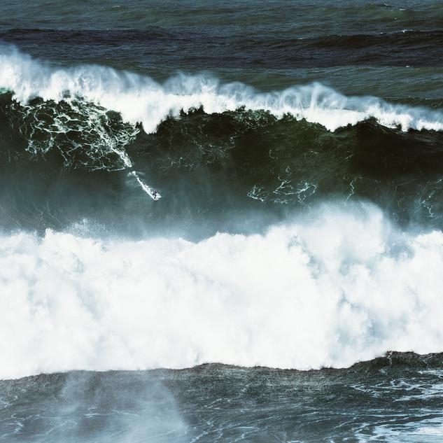 HUMANITARIAN EXHIBITION OCEAN