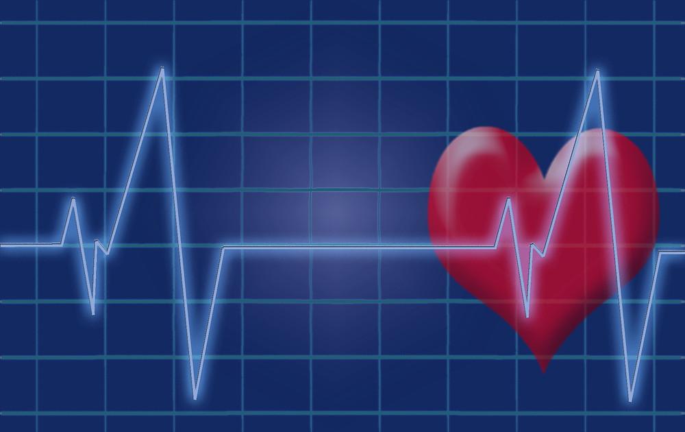 דופק / קצב הלב
