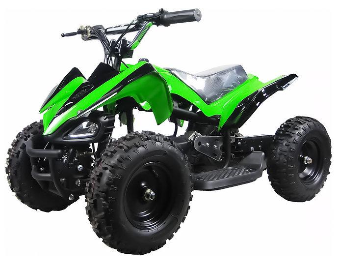 350W 24V Mars Electric ATV Mini Quad Four Wheeler for Kids (Green)