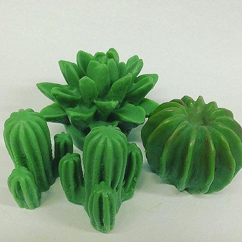Kit de Sabonete de Suculentas e Cactus
