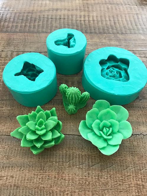 Molde de Silicone - Kit de Mini Suculentas