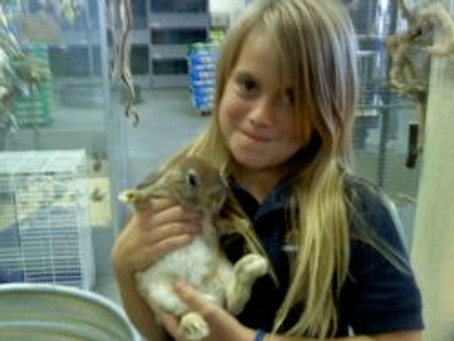 """Daddy Can I Have A Bunny? An Excerpt From; """"A Father's Love"""""""