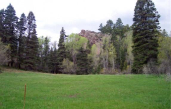 Indian Creek Main