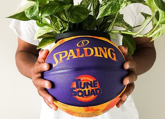 Tune Squad (Orange / No Plant)