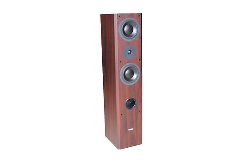 Icon Audio MFV3 (Made For Valve) Standard Floor Speaker