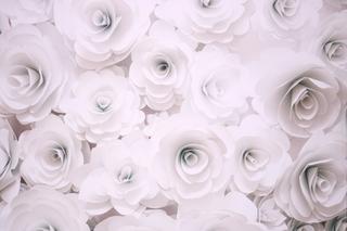 3D Paper Roses