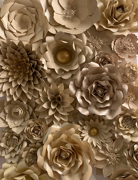 Paper Flower Wall Vancouver