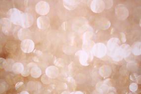 Champagne Sparkle.webp