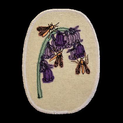 Hyacinthoides Patch