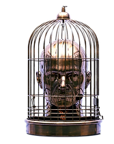 A Head in a birdcage