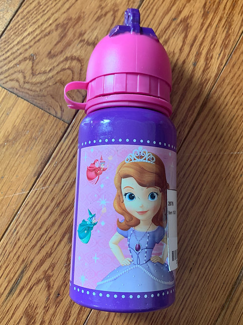 Sofia the First Metal water bottle
