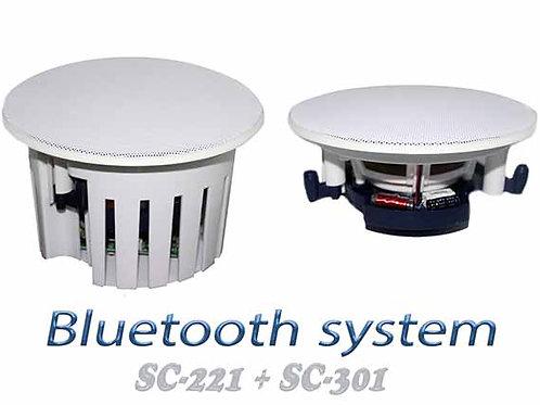 Bluetooth System 2pcs