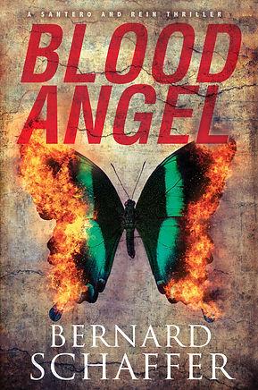 Blood Angel HC.jpg