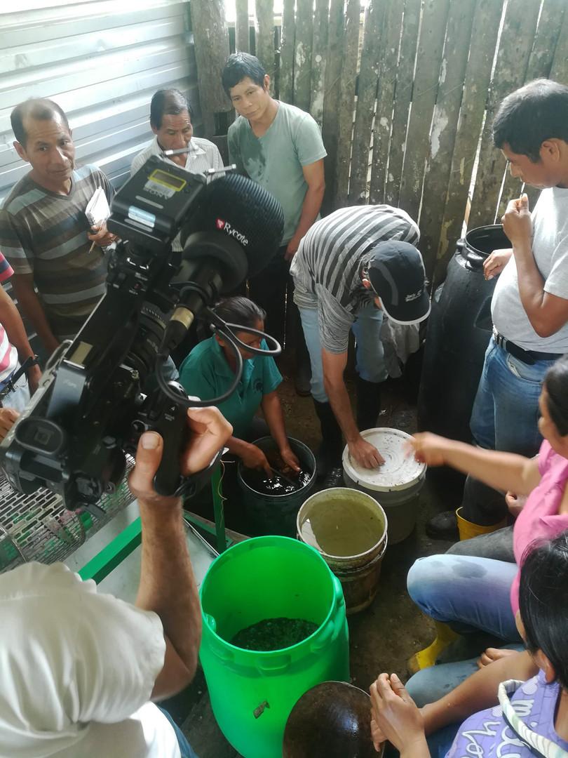Taller de fertilizantes orgánicos
