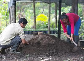 ¡Juntos podemos prevenir -y revertir- la erosión de los suelos!