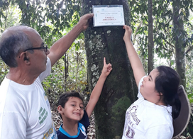Who is Omar Tello? The man who planted a forest from scratch