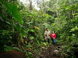 Ecuador: A Megadiverse Country