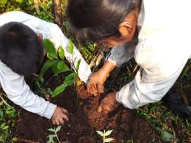 A Brief History of Extraction in the Ecuadorian Amazon