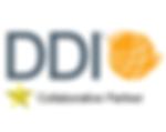 DDI Partner.png