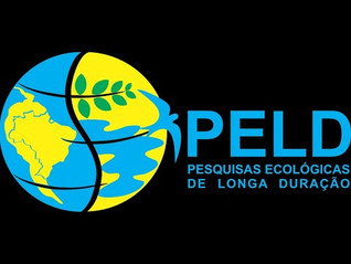 CNPq launches series with research on Brazilian ecosystems