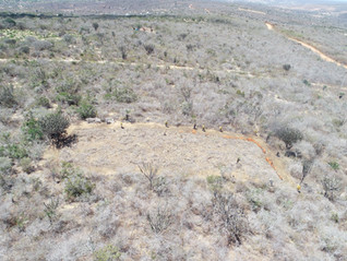 New areas for slash and burn research in the Caatinga are installed in the Catimbau National Park