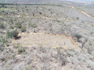 Novas áreas para pesquisas com corte e queima da Caatinga são instaladas no Parque Nacional do Catim