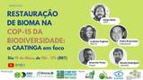 Pesquisador do Peld Catimbau participa de Webinar sobre a restauração da Caatinga