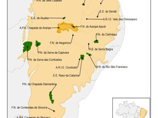 Budget for Caatinga protection is irregular and has been declining, shows study