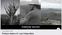 Peld Catimbau researcher talks about current studies on the ecology and conservation of the Caatinga