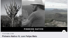 Pequisador do Peld Catimbau fala a respeito dos estudos atuais sobre ecologia e conservação da Caati