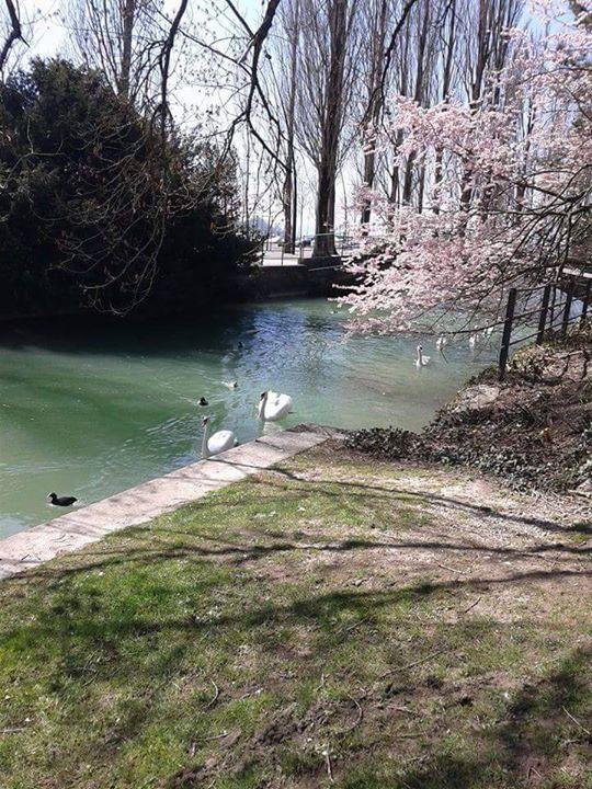 See in Biel/Bienne