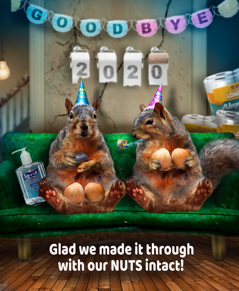 squirrel me bad new years eve copy.jpg