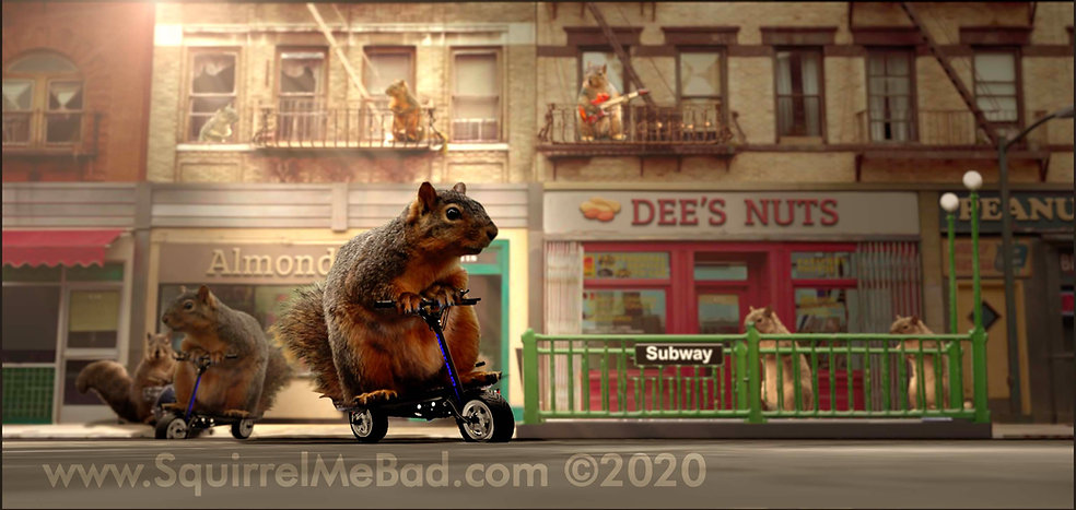 squirrel riding scooter copy.jpg