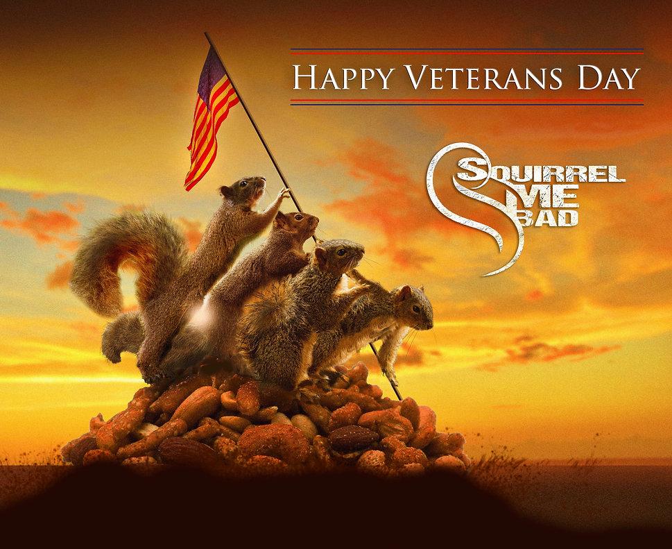 veterans day 3.jpg