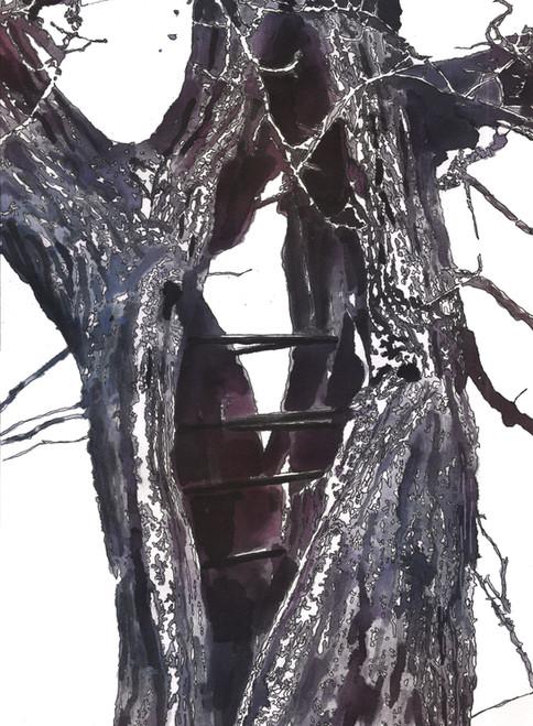 Træ itu lappes med stål