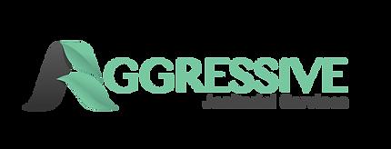 Aggressive-Logo-aqua.png