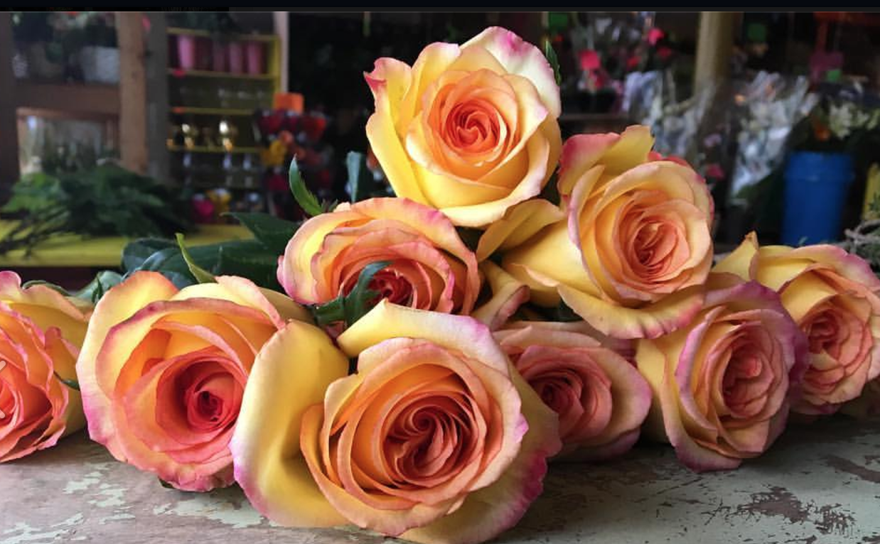 Maureens buffalo wholesale flower market more beautiful flowers from around the world izmirmasajfo