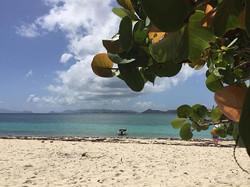 Island adventures 🌴😎