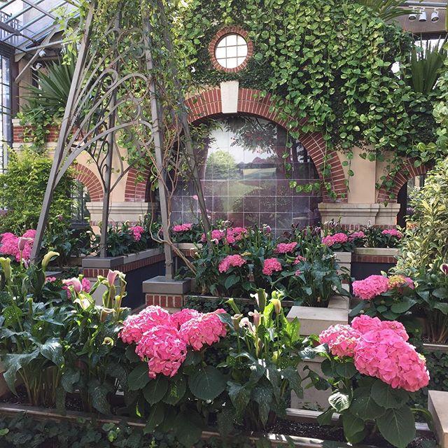 Longwood Gardens ❤️❤️❤️