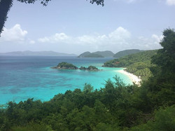 The definition of pristine - Trunk Bay,