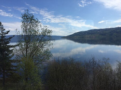 🚊 Oslo to Bergen, Norway 🇳🇴