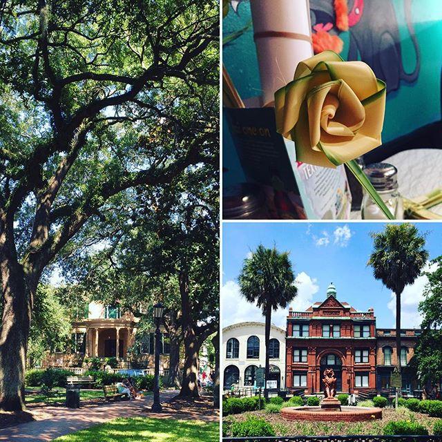 Sunny Savannah 😎