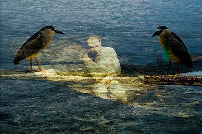 mar homem aves.jpg