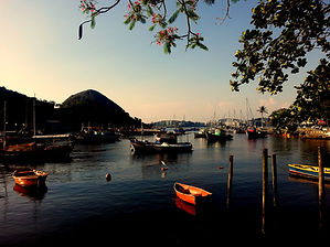 barcos jururujuba flores.jpg