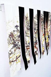 cortina b-2.jpg