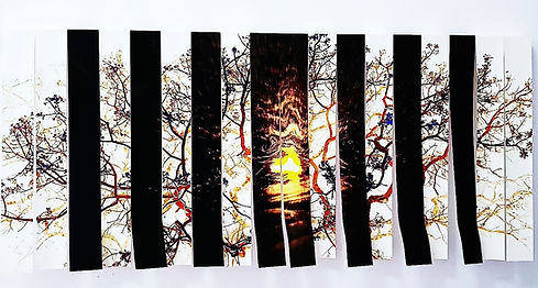cortina a-2.jpg