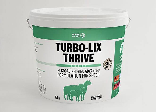 turbo-lix_thrive-sheep_s.jpg