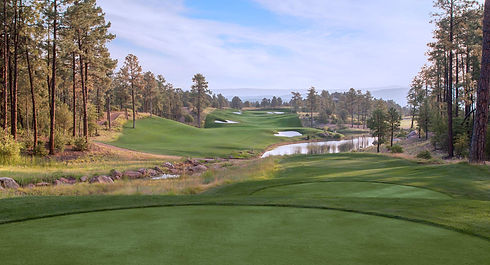 the_rim_golf_club_cover_picture.jpeg